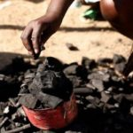 Use Charcoal; Not Palm Oil To Expel Poison – EPA